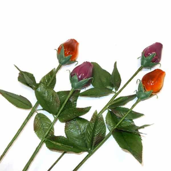 Fleurs les delice de la closiere